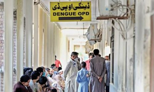 Highest number of dengue cases reported in Islamabad