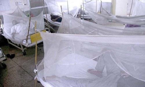 Highest dengue death toll in a day in Punjab so far