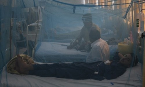 Islamabad sees record rise in dengue cases