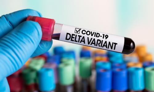 کورونا کی اقسام ڈیلٹا اور ڈیلٹا پلس اینٹی باڈی ردعمل کے خلاف مزاحمت کرتی ہیں، تحقیق