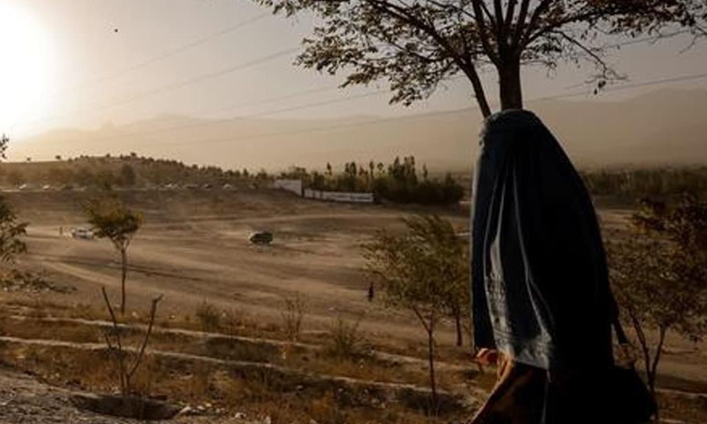As women flee Afghanistan, brain drain hits economy and girls' hopes