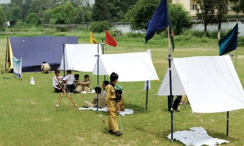 Role of scouting in youth development