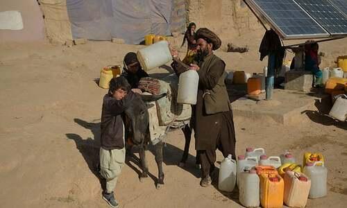More than half of Afghans face 'acute' food crisis: UN