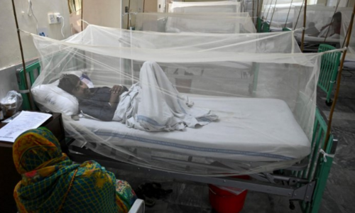 Dengue cases on the rise in Lahore