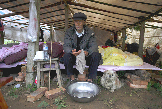 lderly Chinese man waits for food to be distributed with his dog at a makeshift tent in Lushan county in southwestern China's Sichuan province. Saturday's earthquake in Sichuan province killed at least 186 people, injured more than 11,000 and left nearly two dozen missing, mostly in the rural communities around Ya'an city, along the same seismic fault where a devastating quake to the north killed more than 90,000 people in Sichuan and neighboring areas five years ago in one of China's worst natural disasters.—Photo