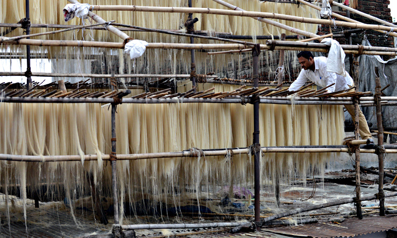 Indian owner, Vipulbhai  inspects 'sev' (vermicelli) hung out to dry at a cottage industry area in Ahmedabad. — AFP Photo