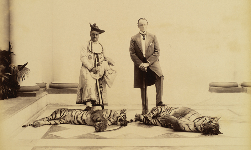 First Tiger shot by H. E. Lord Curzon in India, with Maharaja Madho Rao Scindia, Gwalior, Madhya Pradesh, India, 1899. — Photo credit: Royal Ontario Museum