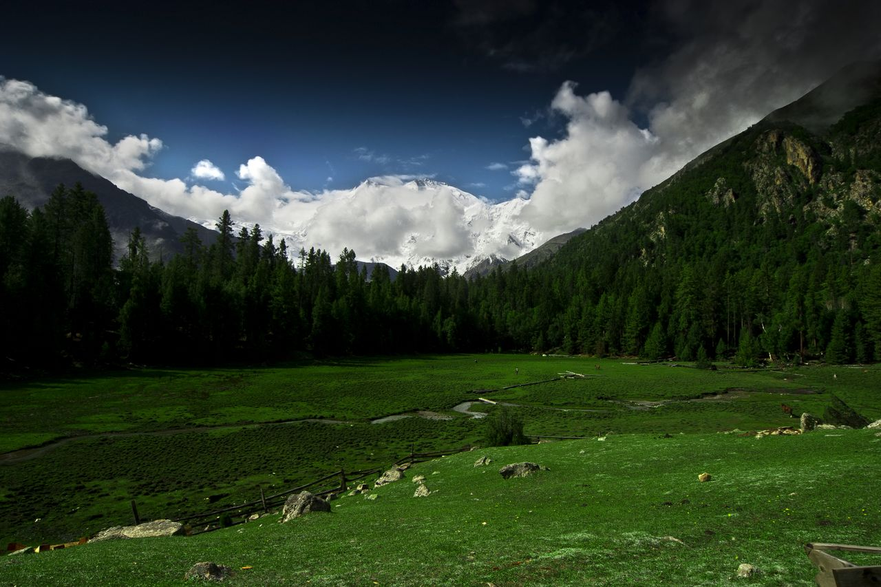 Fairy Meadows, the lush green plateu with Nanga Parbat, the ninth highest mountain in the world in the background.