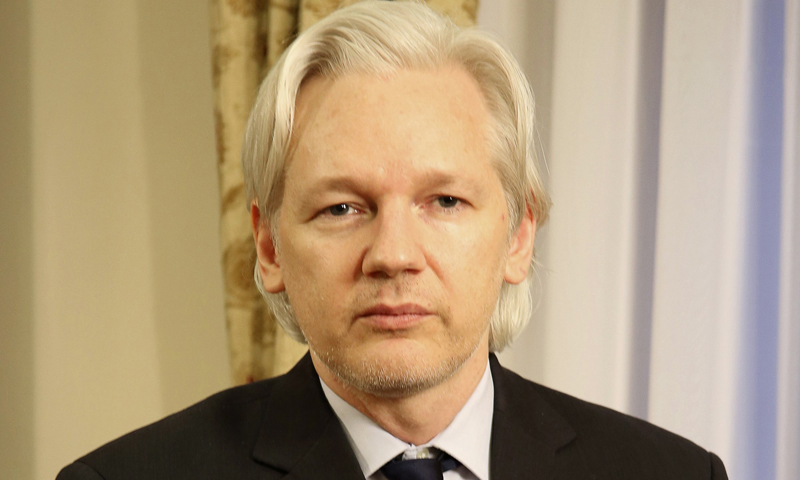 Julian Assange upbeat on chances to Australia's upper house