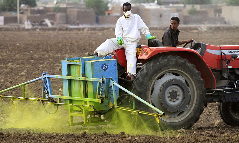 Sudanis work on a tractor in an experimental rice field. -Photo by AFP