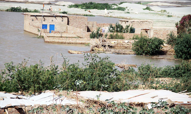 Houses are seen submerged in flood water in the Kacha Area of River Indus. – Online photo