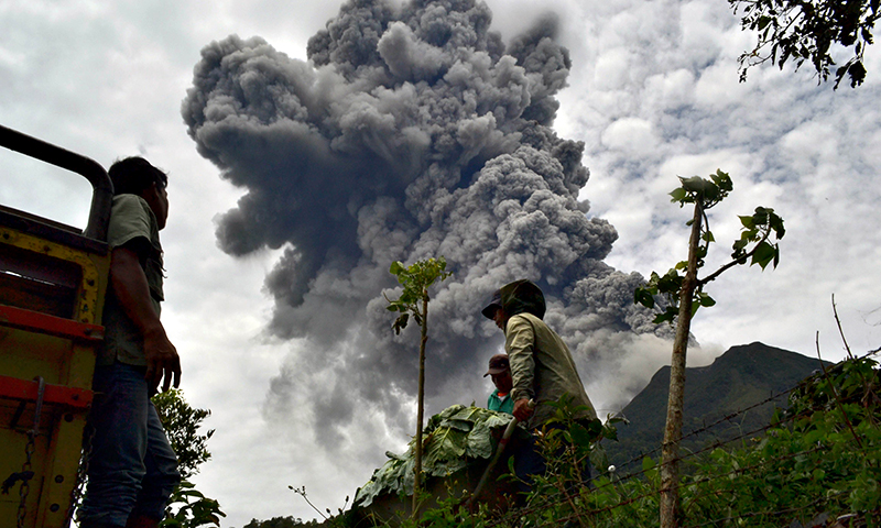 Indonesian farmers rush to harvest crops in the district of Karo as an ash cloud rises during a fresh eruption of the Mount Sinabung volcano. - Photo by AFP