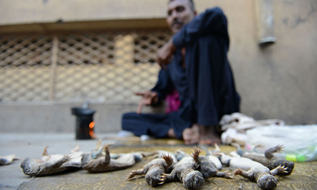 A Pakistani vendor selling spiny tailed lizards known as dhab  waits for customers at a market in Rawalpindi. -Photo by AFP
