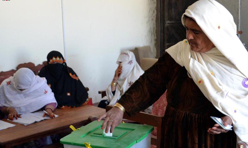 A woman casting her vote during Local Bodies Elections.— Photo by INP