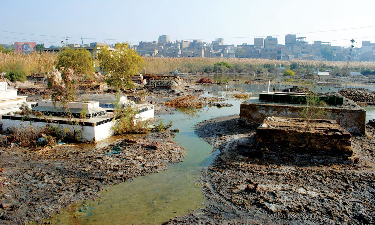 Sewerage water in a Hyderabad graveyard. - Photo by the writer