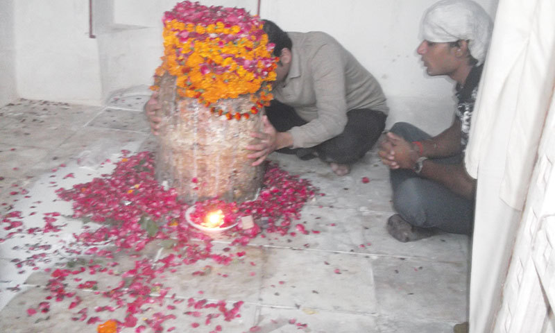 Devotees offering puja.