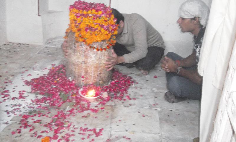 Devotees offering puja.