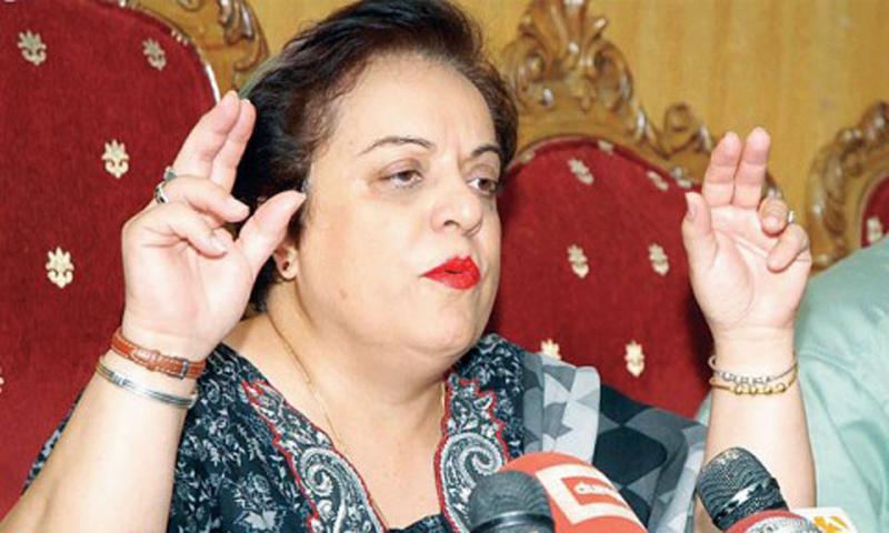 Pakistan Tehreek-i-Insaf information secretary Dr Shireen Mazari. — File photo