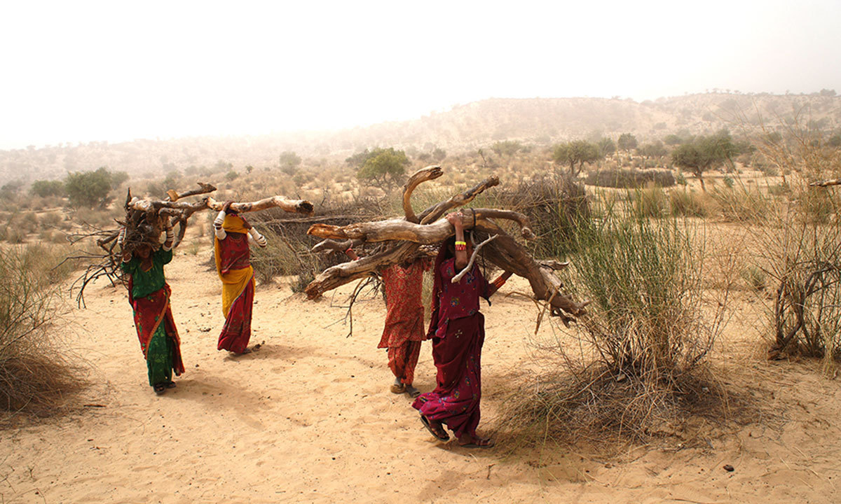 Women returning home after collecting firewood in Thar. – Photo by Emmanuel Guddu