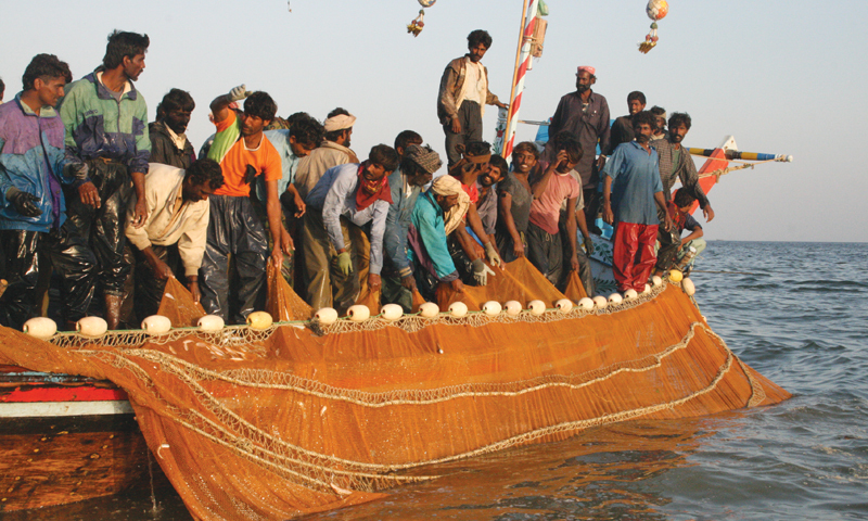 Wire netter boat with its illegal and harmful netting