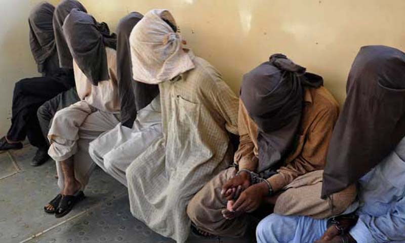 Search operation: 118 suspects arrested in Peshawar