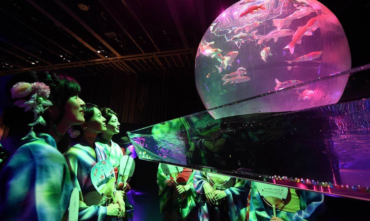 "Women wearing the summer Kimono, ""Yukata"" watch goldfish during the press preview of ""Eco Edo Nihonbashi Art Aquarium 2014"" exhibition in Tokyo. -AFP Photo"