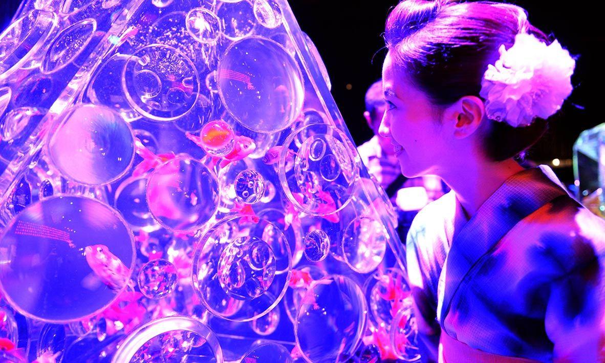 "A young woman wearing the summer Kimono, ""Yukata"" watches the goldfish during the press preview of ""Eco Edo Nihonbashi Art Aquarium 2014"" exhibition in Tokyo. -AFP Photo"