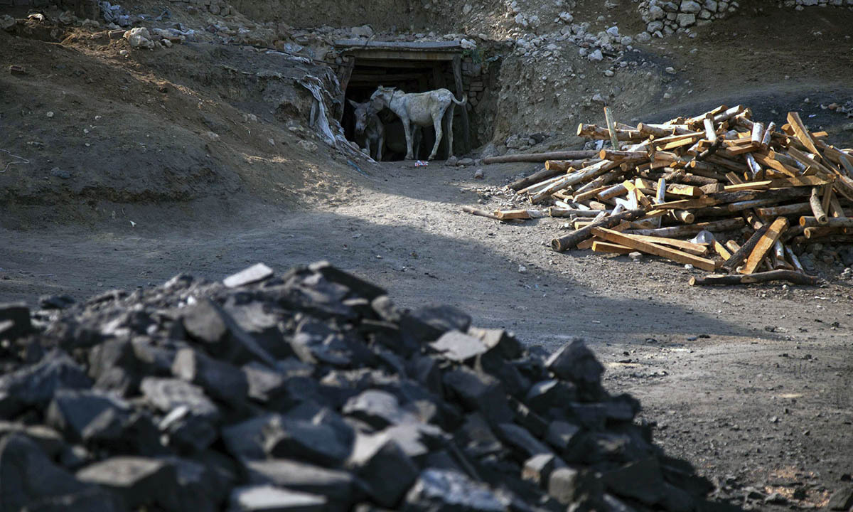 Donkeys stand at the entrance of a coal mine in Choa Saidan Shah, Punjab province, May 5, 2014.  — Photo by Reuters