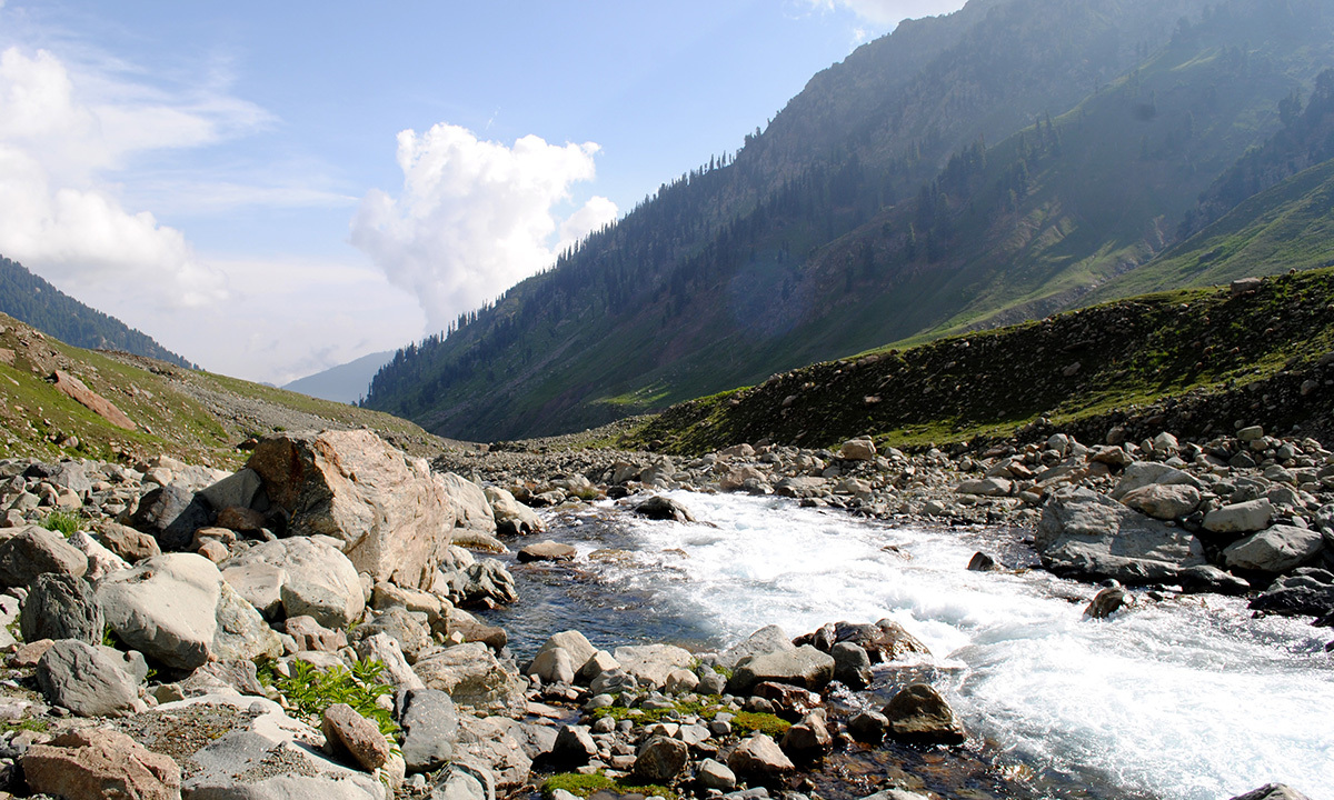 The lake has much ecological importance as it provides water to half of southern Kashmir's districts. — Haziq Qadri