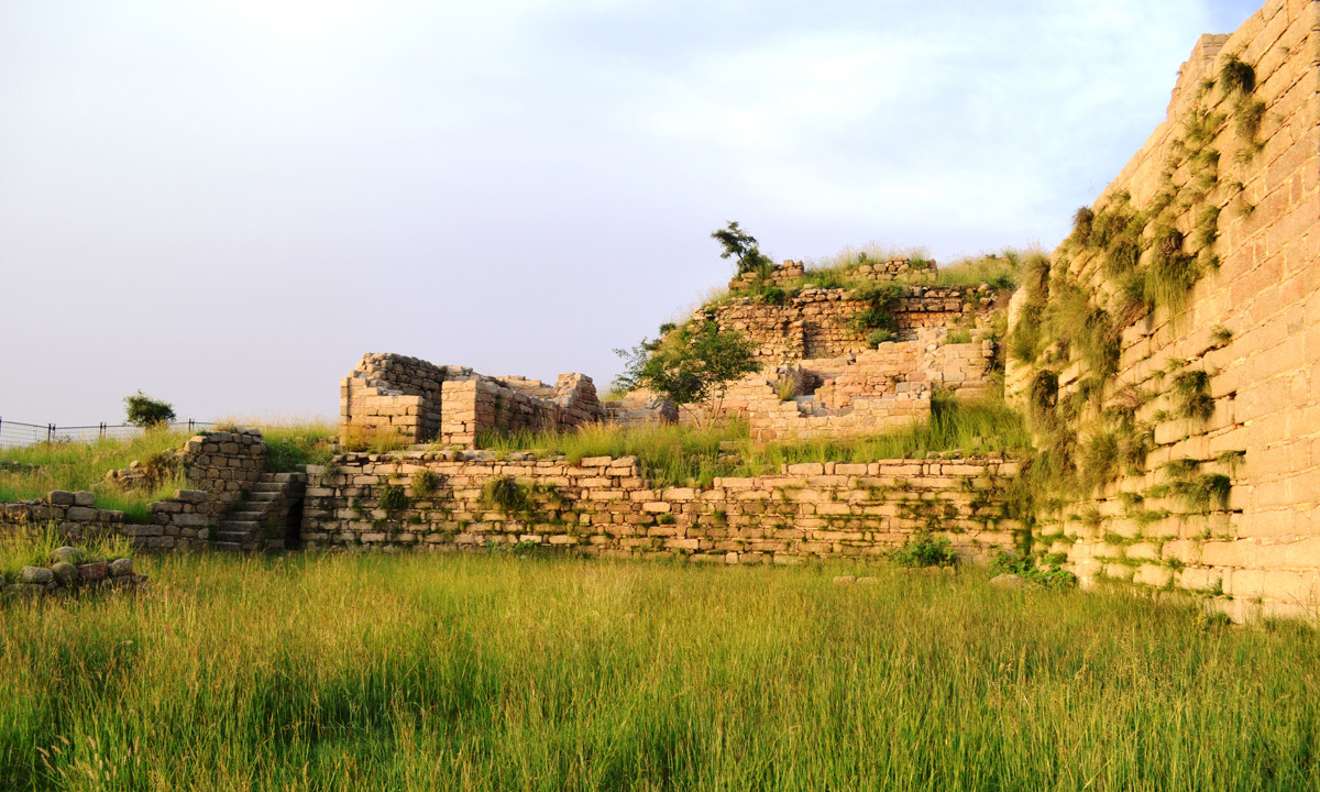 Rani Ghat is the largest site in the Gandhara region comprising of 4 kilometer radius. – Photo by Naveed Yousafzai