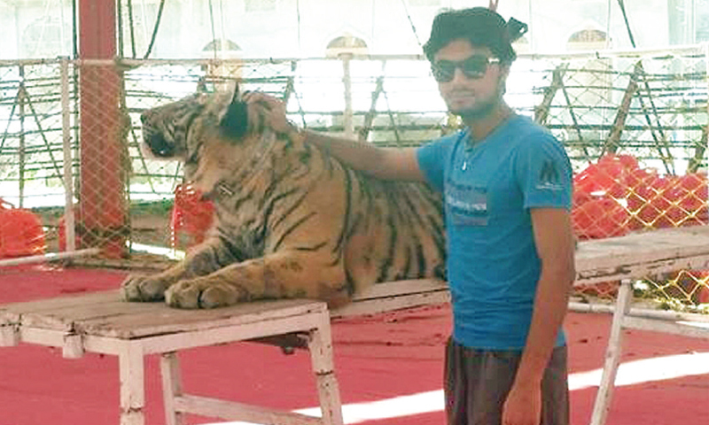 Bilal Hussain stands with a tiger.