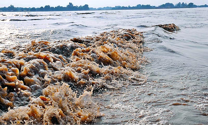 A view of flood water passing in Chenab River near Multan.— Photo by APP