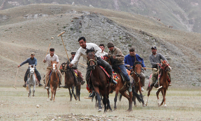 Yak polo is played at an altitude of 13,000 feet above sea level