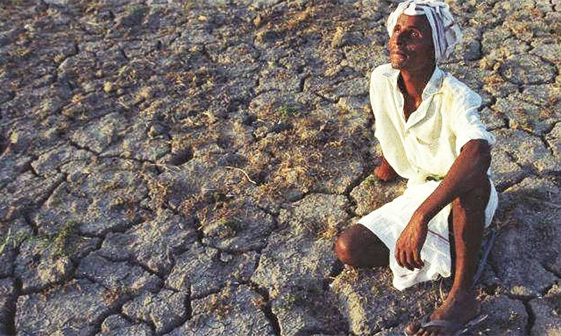 Crime, previously negligible in Thar, and suicide is now on the rise, as the social bonds holding communities together dry up in the heat of an arid monsoon season. -Photo courtesy of the Al Mustafa Welfare Trust