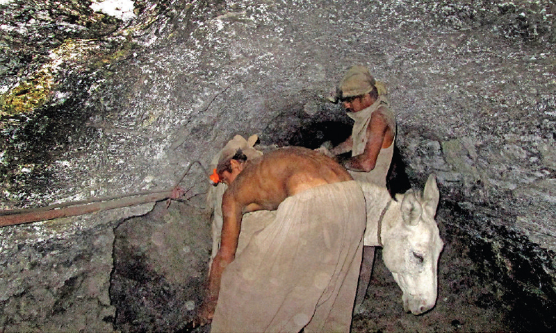 Coal is being loaded on a donkey.
