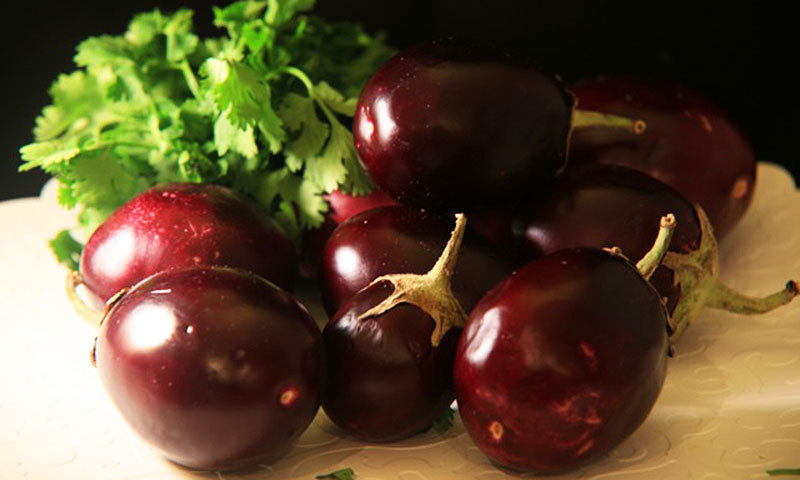 """""""It is impossible to overstate the significance of brinjal in sub continental food."""""""