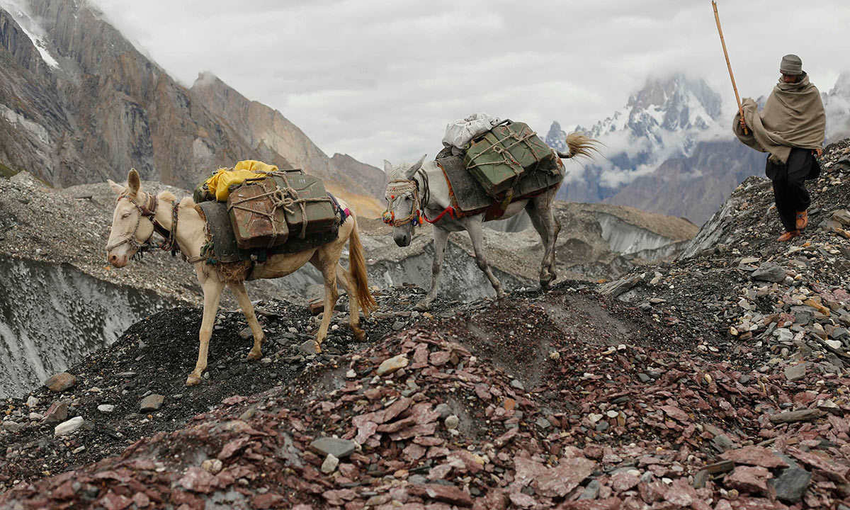 A local farmer drives his mules down the rock-covered Baltoro glacier near Urdokas along the K2 base camp trek in the Karakoram mountain range in Pakistan. -Reuters Photo