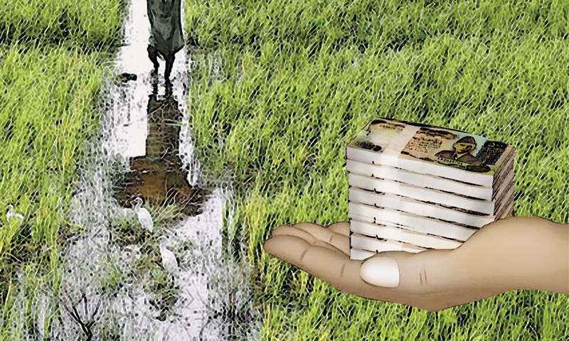 Rs10bn loan scheme for flood-hit farmers