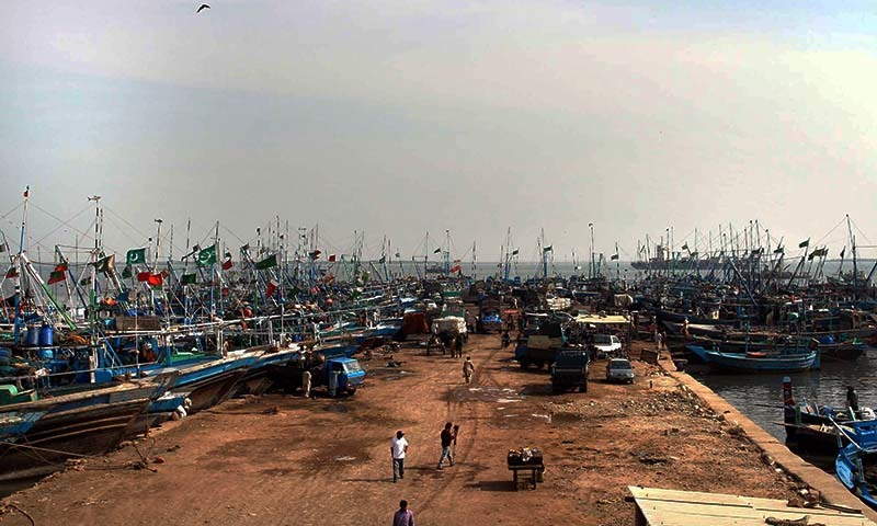نیلوفر طوفان کے خطرے کے باعث بندرگاہ پر کشتیوں کا ڈھیر— فوٹو پی پی آئی