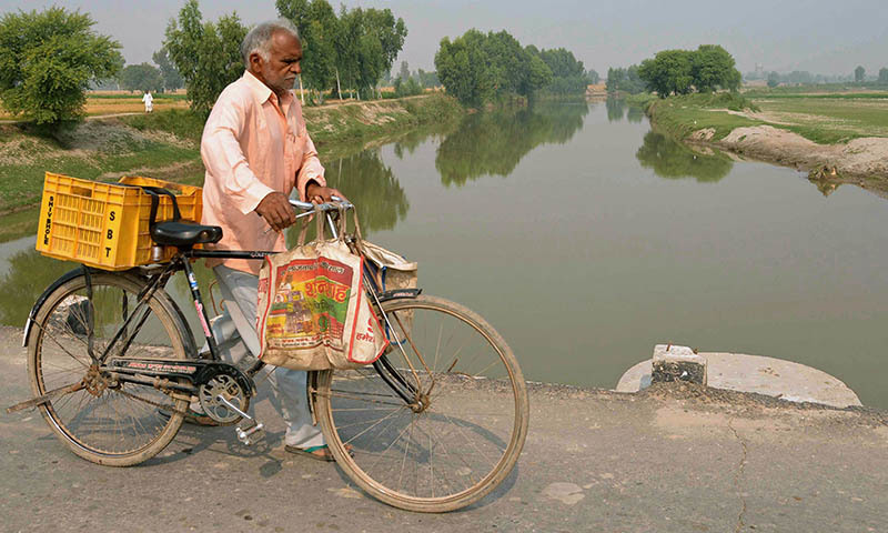 In this photograph taken on October 30, 2014, an Indian villager pushes his bicycle on a bridge over the polluted Sutlej river in the village of Dona Nanka on the Indian-Pakistan border some 17kms from Fazilka in the northern state of Punjab. - AFP