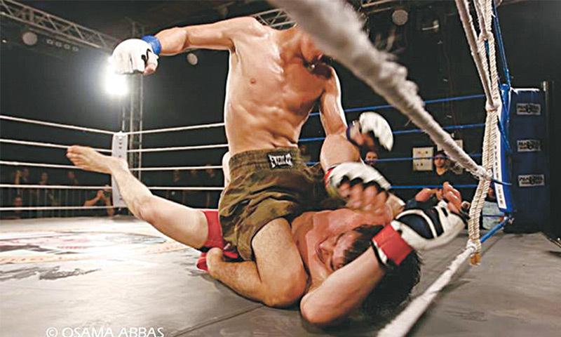 Crouching fighter, hidden talent