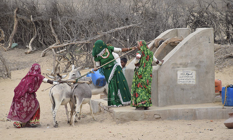Famine has triggered large scale migration of marginalised groups in Thar.—File photo by Muhammad Hussain Khan