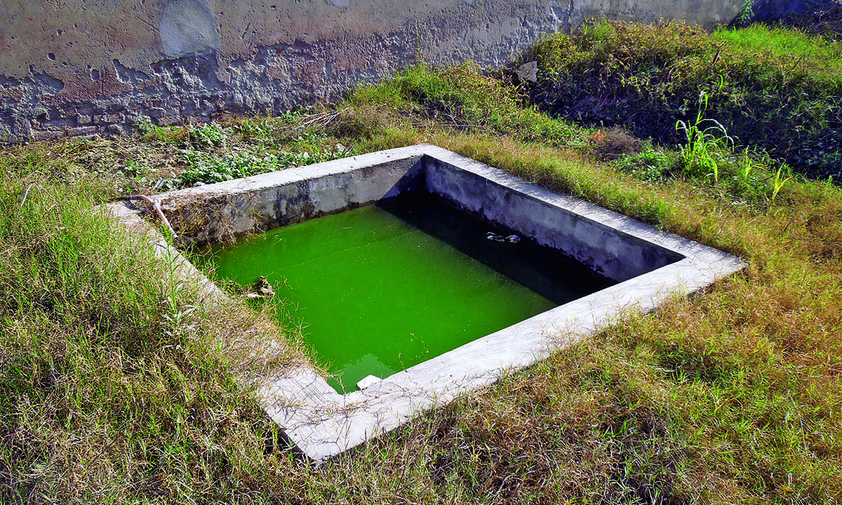 A small pond on the premises also shows lack of maintenance.— Photo by author