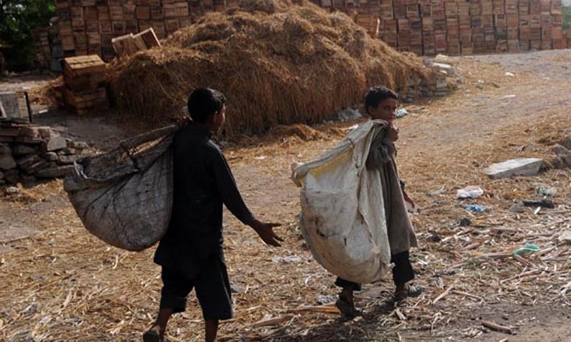 In this photograph, Afghan trash collectors search for recyclable items at a garbage dump in Karachi. — AFP/File