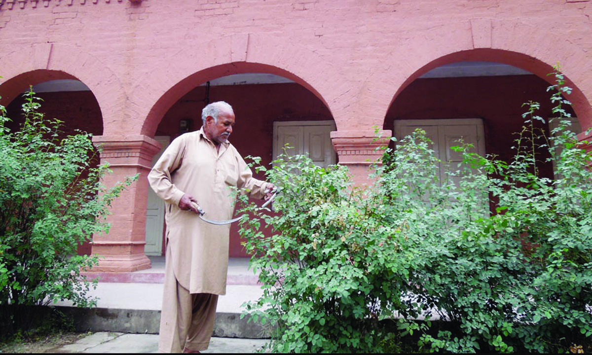 A gardener tends to the plants surrounding the building.