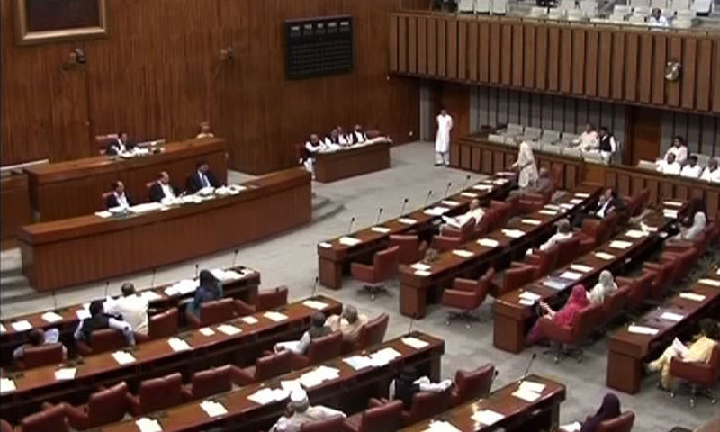 A view of the Senate session in progress. — DawnNews screengrab