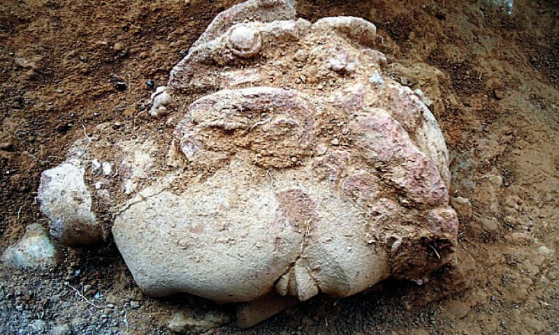 A terra cotta head of Buddha discovered during excavation.