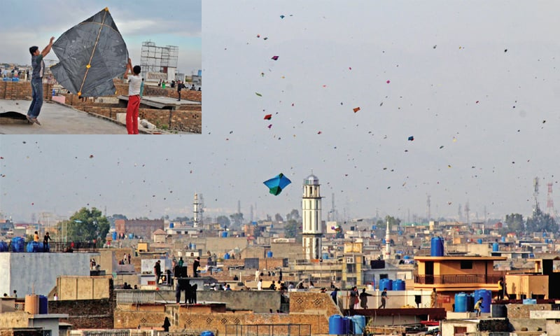 Despite an official ban on kite-flying in Punjab, residents of Rawalpindi celebrated Basant with great fervour, filling the city's sky with a multitude of kites. (INSET) Boys try to launch a massive 5-tawa kite into the air. — Photo by Khurram Butt
