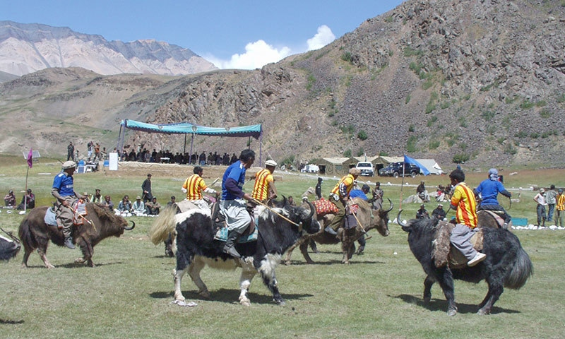 People play a game of polo. — Photo courtesy: KP Tourism Corporation