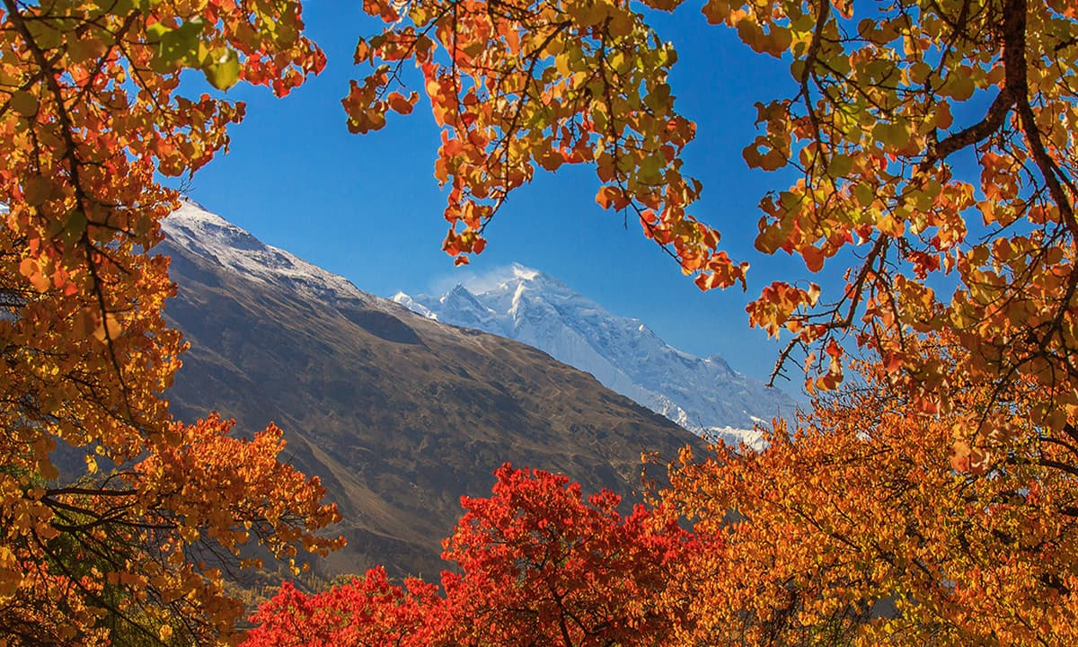 View of Rakaposhi.